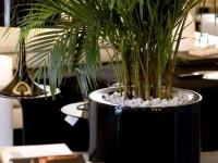 cilindro-alto-foc-lacado-60-modern-flower-pots-marbella-aaa122